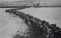 三八线与十七度线:朝战和越战期间中美信息沟通比较研究