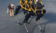 丰田洽购波士顿动力 布局机器人与人工智能