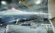 美国军机的气候试验:以F-35B为例