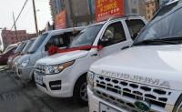 中国跃居纯电动车全球份额首位