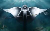 """DARPA启动""""持续性水生生物传感器""""项目,利用海洋生物探测潜艇"""