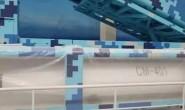 CM-401反舰弹道导弹:杀器还是鸡肋?