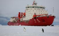 极地船舶发展现状分析