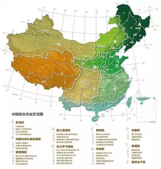 中国综合农业区划图