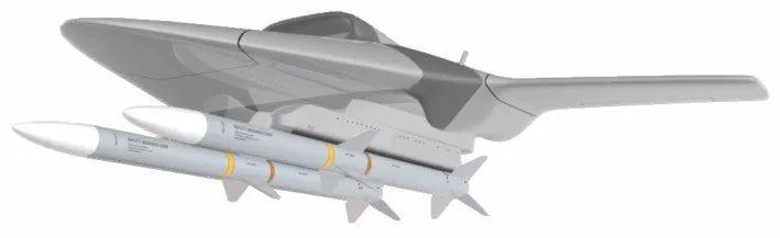 """携带2枚AIM-120空空导弹的""""飞行导弹挂架""""无人机想象图"""
