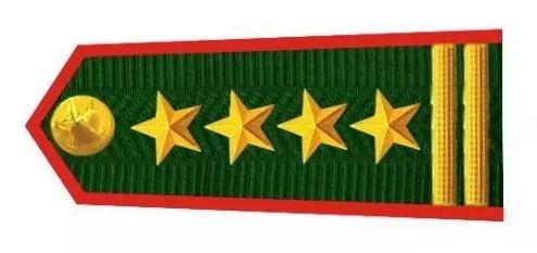 越南人民军边防部队大校肩章